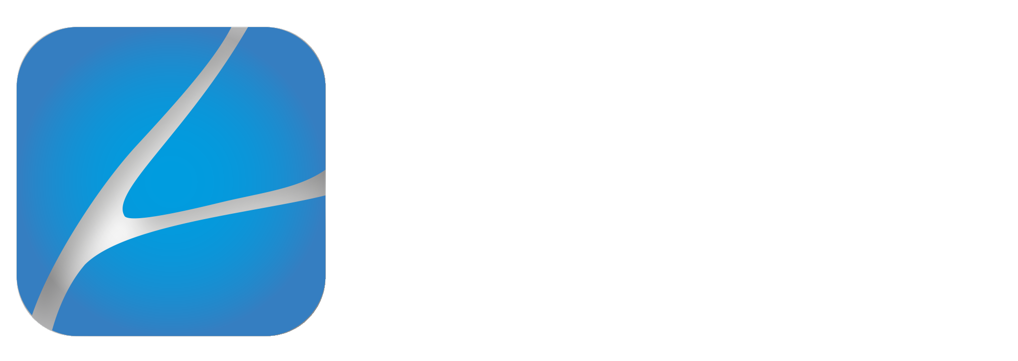 DGM VASCULAR
